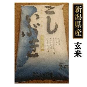 新潟県産 こしいぶき 10kg (5kg×2個) 玄米(令和2年産)送料無料[贈答兼備]