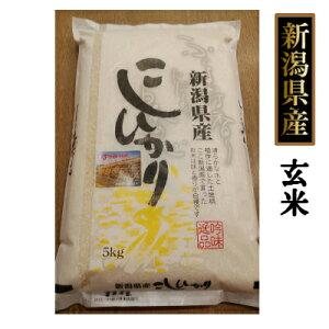 【送料無料】☆新潟産 自然乾燥ハサ掛け コシヒカリ 5kg 玄米(令和元年産)[贈答兼備]