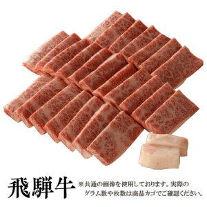【送料無料】飛騨牛 霜降り 焼肉用カルビ100g[贈答兼備]