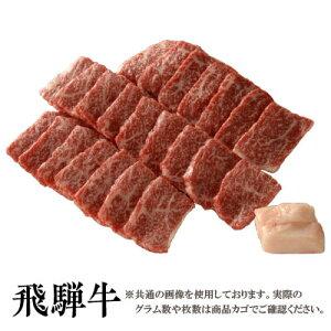 【送料無料】飛騨牛 霜降り 焼肉用ロース100g[贈答兼備]