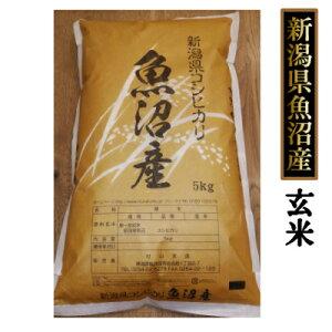【送料無料】魚沼産コシヒカリ 10kg (5kg×2個)玄米 (令和元年産)新米[贈答兼備]