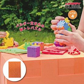 ベルギー生まれの3D脳トレパズル HAPPY CUBE ハッピーキューブ レベル4 オレンジ パズル 知育玩具 おでかけ おもちゃ 5歳 6歳 7歳 8歳 小学生 大人 高齢者 男の子 女の子 記念品 誕生日 プレゼント プチギフト