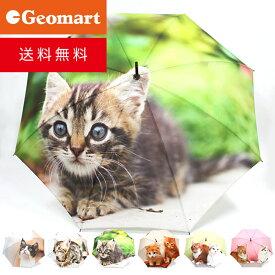 全面ねこプリント傘 全6種 送料無料 ポンジー生地 キャット ネコ 猫 雨傘 婦人傘 ジャンプ傘 誕生日 プレゼント