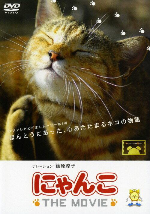 【中古】にゃんこ THE MOVIE/篠原涼子DVD/邦画ファミリー&動物
