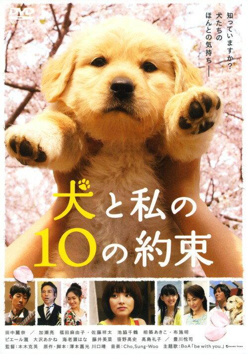 【中古】犬と私の10の約束/田中麗奈DVD/邦画ファミリー&動物