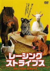 【中古】レーシング・ストライプス 【DVD】/ブルース・グリーンウッドDVD/洋画コメディ