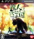 【中古】魔人と失われた王国ソフト:プレイステーション3ソフト/アクション・ゲーム