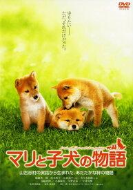 【中古】マリと子犬の物語 スタンダード・ED 【DVD】/船越英一郎DVD/邦画ファミリー&動物