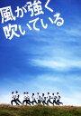 【中古】初限)風が強く吹いている SP・ED 【DVD】/小出恵介DVD/邦画青春