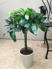 人工観葉植物 パキラ H60cm