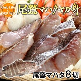 伊勢神宮奉納魚マハタ切身 8切 新鮮 おいしい ギフトお祝い 内祝い 紅白 贈り物 プレゼント 父の日 母の日 敬老の日
