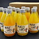 伊藤農園100%ピュアジュース15本