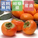 冷蔵熟成富有柿 岐阜県産 3kg(2Lサイズ×12玉)【出荷開始!】【2月下旬までの販売予定】