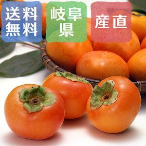 冷蔵熟成富有柿 岐阜県産 3kg(2Lサイズ×12玉)【予約受付中】【12月中旬から出荷開始予定】
