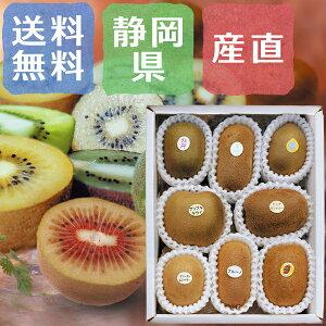 国産キウイ スペシャルセット 静岡県産 減農薬 1kg(8〜9種類)【出荷開始!】【1月下旬までの販売予定】