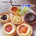 アレルギー対応 ケーキ(お好きな味を20個選べるセット)≪りんご・もも・ブルーベリー・みかん・さつまいもと栗・ガ…