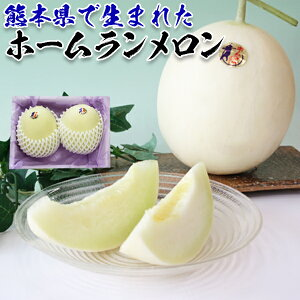 ホームランメロン 2玉 (約1kg × 2玉 合計2kg) 熊本県産・家庭用・贈答用ギフトに・送料無料 110912
