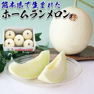 ホームランメロン 5kg(5-6玉入り) 熊本県産・家庭用・贈答用ギフトに・送料無料 110915