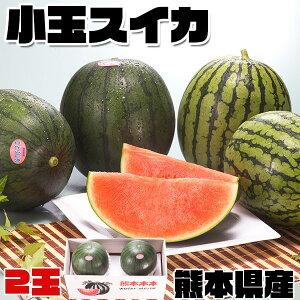 小玉 スイカ 熊本県産 1箱 小玉・1.8kg × 2玉(合計3.6kg) 高級すいか|化粧箱入り 贈答用 ギフト・送料無料 100512