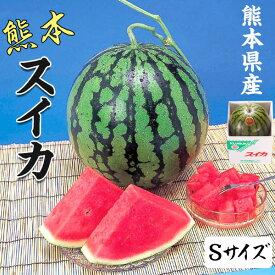 スイカ 4kg 熊本県産 1箱Sサイズ・4kg(1玉)  高級すいか/等級:秀(赤)|化粧箱入り 贈答用 ギフト・送料無料