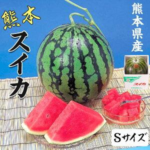 スイカ 4kg 熊本県産 1箱Sサイズ・4kg(1玉)  高級すいか/等級:秀(赤)|化粧箱入り 贈答用 ギフト・送料無料 100011