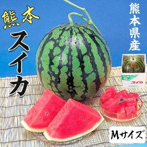 スイカ 5kg 熊本県産 1箱Mサイズ(1玉)  高級すいか/等級:秀(赤)|化粧箱入り 贈答用 ギフト・送料無料