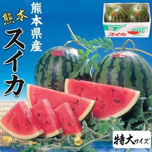 スイカ 熊本県産 1箱 特大サイズ・9kg(×2玉セット・合計18kg)  高級すいか/等級:秀(赤)|化粧箱入り 贈答用 ギフト・送料無料