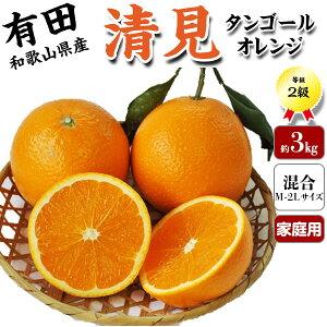 清見 3kg 等級:秀【和歌山県有田市産】有田みかん農園が育てた「清見タンゴール・オレンジ」贈答用・送料無料