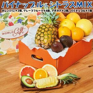 パイナップル&シトラス・ミックス・クラシック(フルーツ箱入り) オレンジ(L)×2個、 グレープフルーツ×4個、 アボカド×2個、 パイナップル×1個 ギフト・お礼・お中元・お歳暮・お見舞い