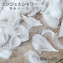 エンジェルシャワー(羽&パール)フェザーシャワー/羽シャワー1袋で100個(結婚式/披露宴/二次会)