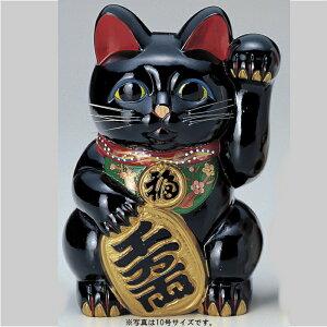 常滑焼2018梅月10号黒小判付招猫(左手)(常滑8435)【背面貯金箱】