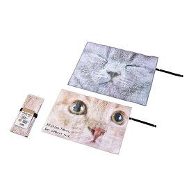 【セット売り】10個セット レジャーシート(猫柄)ベルトでコンパクトに収納ネコ柄敷物エコー金属【コンビニ受取対応商品】