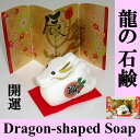Dragonsoap