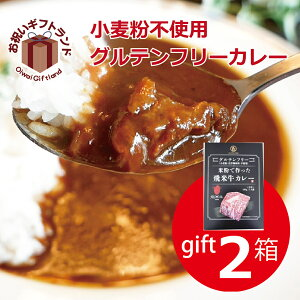 グルテンフリー カレー レトルト 2食 ビーフ 国産 黒毛和牛の飛米牛入り (箱入り)小麦粉不使用 GFC-02B