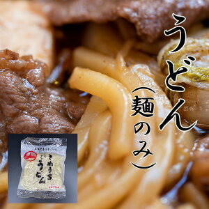 うどん詰め合わせ お歳暮 御歳暮 お手土産 お年賀 NAT36 /サンサス なつかしうどん(麺のみ)36パック NAT36