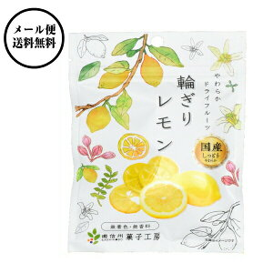 南信州菓子工房 国産・輪切りレモン 24g×10袋 【送料無料】国産 レモン使用 ドライフルーツ ゆうメールでお届け包装不可