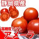 フルーツトマト『高糖度トマト』アメーラトマト1kg