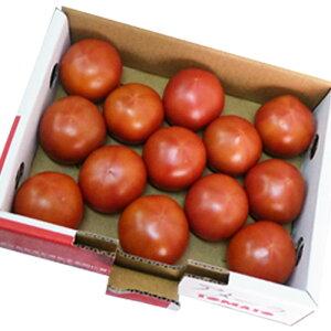 [ギフトパーク]フルーツトマト【アメーラトマト】1kg 高糖度トマト 甘いトマト お取り寄せ 送料無料 勤労感謝の日 プレゼント