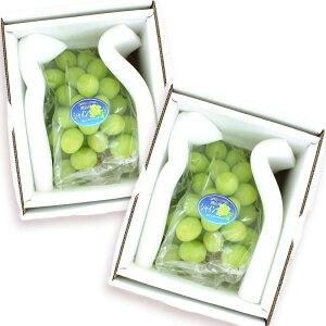 [ギフトパーク]岡山県産シャインマスカット 2房 化粧箱入り(1房あたり700g以上)【送料無料】ぶどう ブドウ 葡萄 贈り物 果物 通販 勤労感謝の日 お歳暮 御歳暮 フルーツギフト フルーツ ギフ