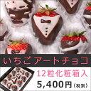 [ギフト]いちごチョコレート[いちごアートチョコ12粒入]誕生日ケーキ 結婚記念日 結婚祝い サプライズプレゼント パーティー フルーツギフト 果物盛り合わせ ...