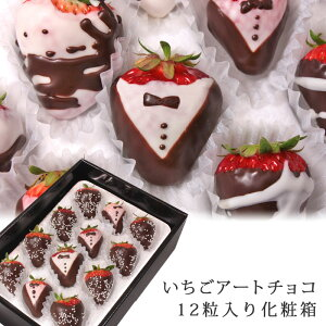 [ギフトパーク]ホワイトデー ギフト チョコ いちごチョコレート[いちごアートチョコ12粒入]誕生日 結婚記念日 サプライズプレゼント パーティー フルーツギフト スイーツ イチゴ 苺 フルー