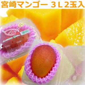 [ギフトパーク]【宮崎マンゴー 大玉3Lサイズ2玉パック入り】マンゴー お中元 父の日 フルーツギフト フルーツ ギフト プレゼント 贈り物 果物 みやざきマンゴー 宮崎県産マンゴー アップル