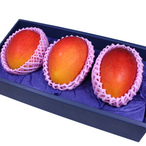 [ギフトパーク]【宮崎マンゴー Lサイズ3玉化粧箱】マンゴー お中元 父の日 フルーツギフト フルーツ ギフト プレゼント 贈り物 果物 みやざきマンゴー 宮崎県産マンゴー アップルマンゴー