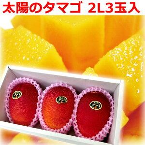 [ギフトパーク]【宮崎マンゴー 太陽のタマゴ 2Lサイズ3玉化粧箱】マンゴー お中元 御中元 フルーツギフト フルーツ ギフト 誕生日 プレゼント 贈り物 果物 みやざきマンゴー 宮崎県産マンゴ