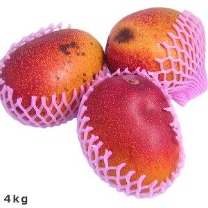 [ギフトパーク]送料無料[訳あり宮崎マンゴー約4kg 12〜18玉入り]お試し品宮崎県産完熟アップルマンゴー 訳あり マンゴー ちょいわるマンゴー 業務用 加工用