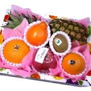 父の日フルーツ《果物詰め合わせ》《果物ギフト》[フルーツセット][果物][くだもの][フルーツ][ギフト][詰め合わせ][送料無料][あす楽対応][お誕生日][お祝い][プレゼント][お見舞い][贈り物][かご盛り][翌日配達][果物盛り合わせ][フルーツギフト][バースデーギフト]