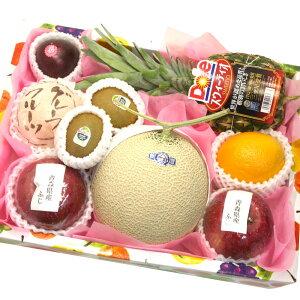 [ギフトパーク]果物 詰め合わせ 木 フルーツセット 静岡マスクメロン入 送料無料 誕生日 贈答用 贈り物 盛り合わせ 出産祝い 還暦祝い お礼 内祝い フルーツギフト バースデー 誕生日 プレゼ