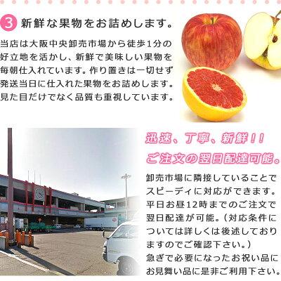 [果物詰め合わせ][誕生日][ギフト][プレゼント][フルーツバスケット][果物][フルーツ][ギフト][贈り物][贈答品][お祝い][記念日][バースデーギフト][果物詰め合わせ][フルーツセット][バースデー]