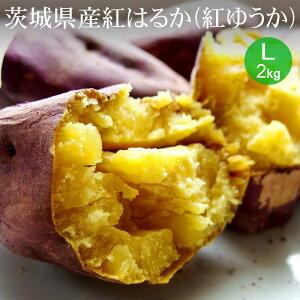 茨城県産 紅はるか(紅ゆうか) L×2kg A等級 生芋【ブランド芋 大き目 お試し 野菜便 常温便 送料無料】
