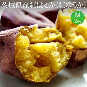 茨城県産 紅はるか(紅ゆうか)生芋 M×2kg A等級【ブランド芋 お試し 野菜便 常温便 送料無料】